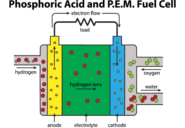 A P.E.M. Fuel Cell diagram